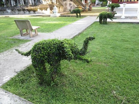 Überall Elefanten...